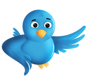 Quick Tips to Optimize Your Twitter Profile