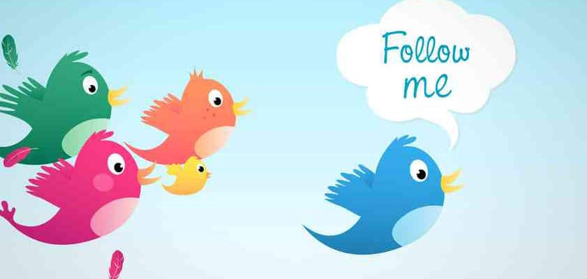 11 Simple Tactics to Get More Twitter Followers (the right way)